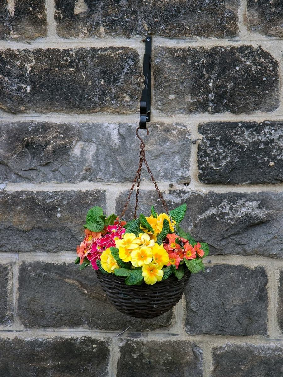 16 adorable flowering plants for hanging basket