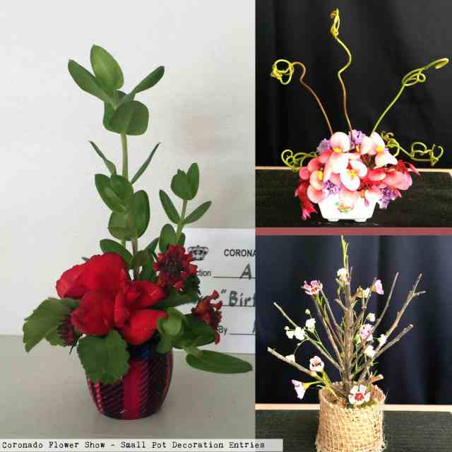miniature flower pot decoration entries