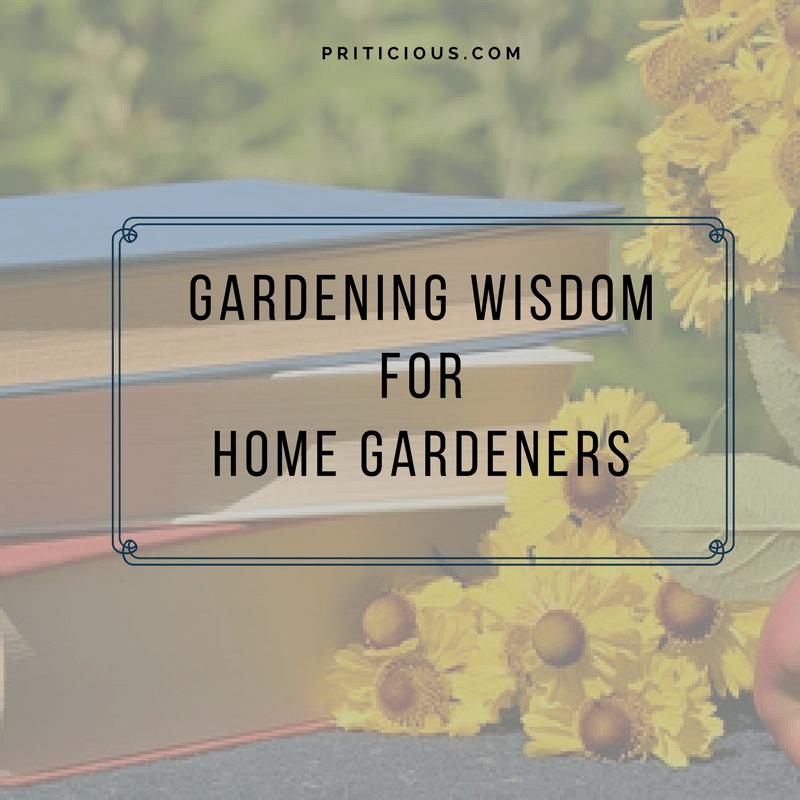 Gardening Wisdom  To Control Nematodes