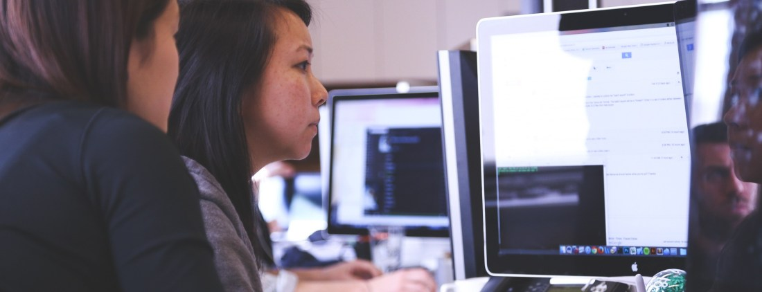 person looking at a computer screen