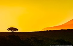 tuinplaas-sunset