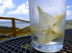 star fruit and water