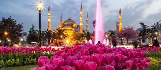 Custom Turkey Tours