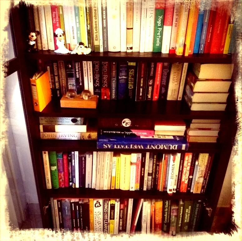Aufgeräumter Bücherschrenk