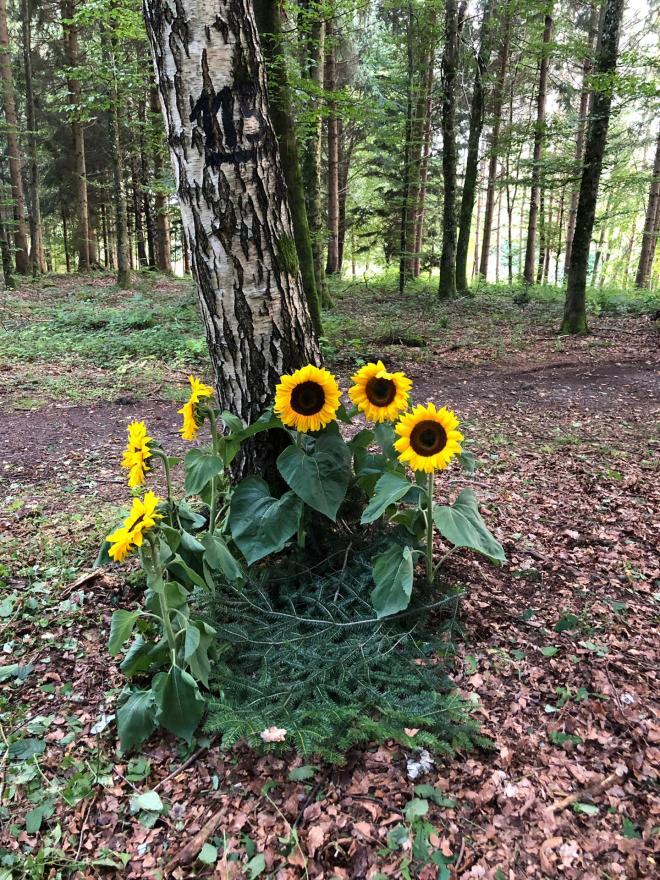 Waldfriedhof1_2019