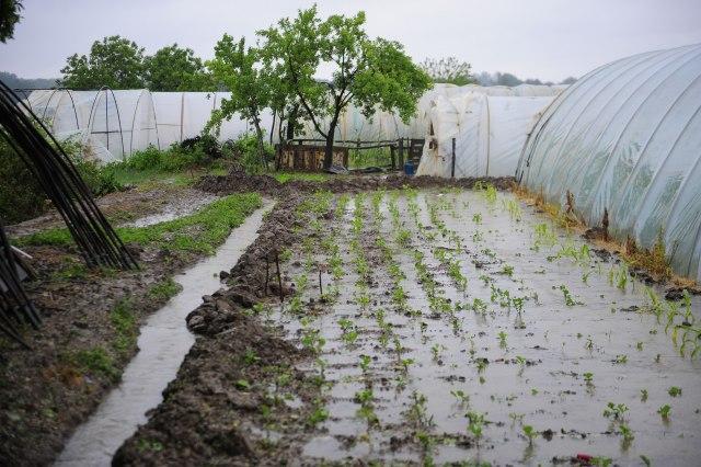 Poljoprivreda Poplave 640×426