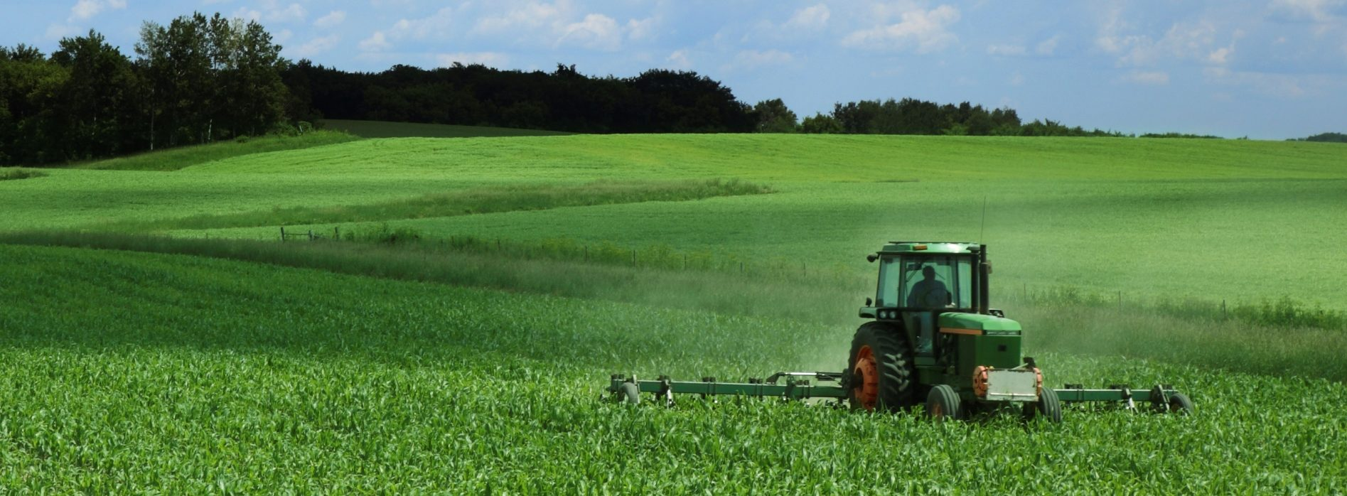 Uskoro Rezultati Utjecaja SSP-a Na Poljoprivredni Sektor