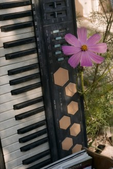 Keyboard & Flower