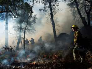 Jason Igniting a Controlled Burn, US Forest Service, California 2015
