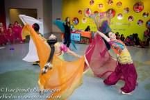 Bollywood Workshops & Shows