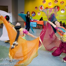 Bollywood Workshops & Shows