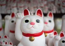 Japanese Lucky Waving Cat Symbol
