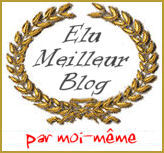 Elu meilleur blog