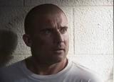 Prison Break Dominic Purcell