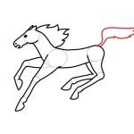 Как нарисовать лошадь – реалистичный вариант для детей и взрослых
