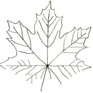 Изображаем форму листочка
