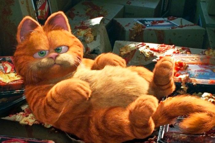 Masih dari film Garfield