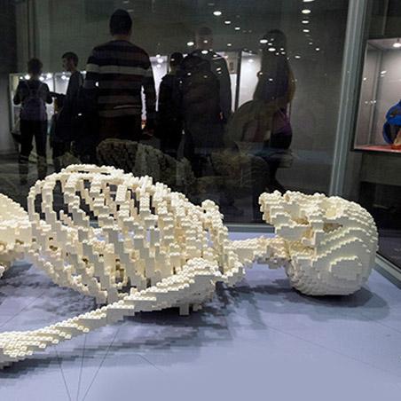 Выставка Лего человеческое тело