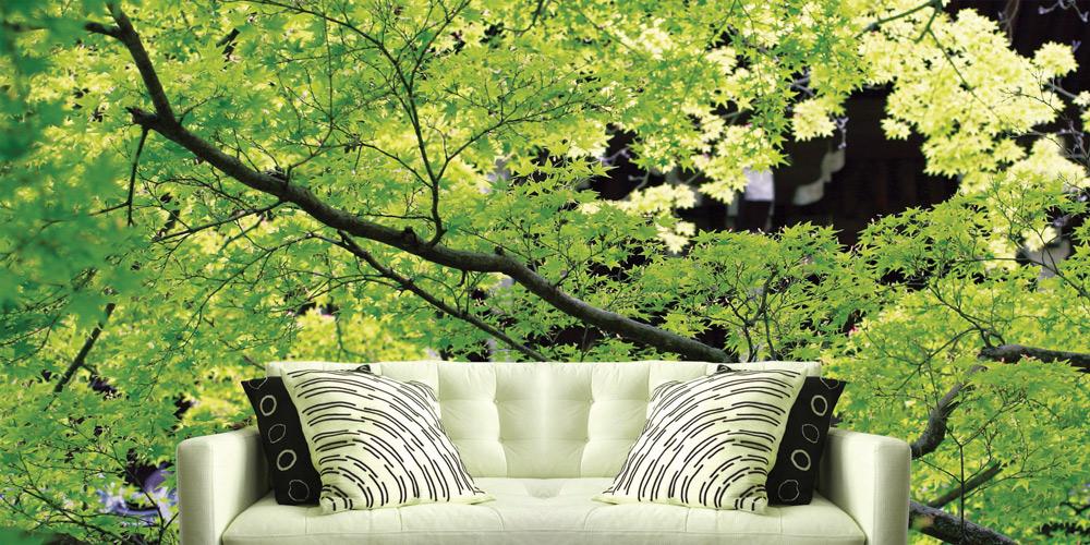 11-446-spirit-of-kyoto-3-1