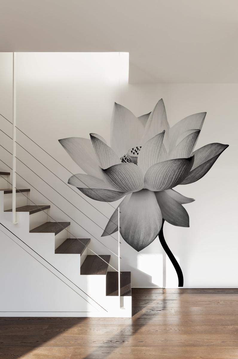 Adhésif Lotus