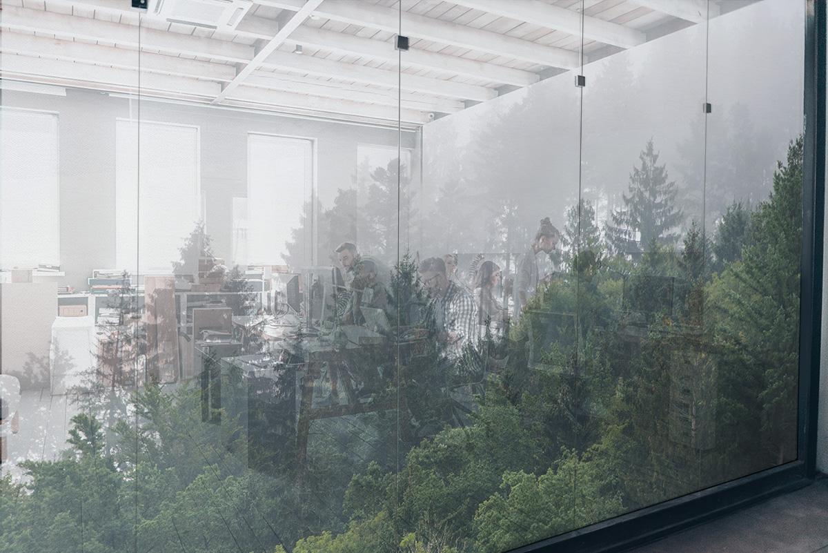 Tissus pour vitres SQUID FOREST