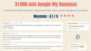 Avis Google My Business Vendée Grand Littoral