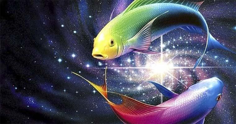 Смотреть Гороскоп знака Рыбы на 2019 год Собаки, Новый год - 2019 видео