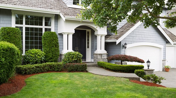 8 professional landscaping tips