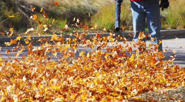 fall & winter cleanup in broken