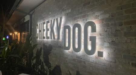 Cheeky Dog 1600 x 926 - Signage