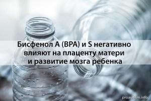 Альтернатива бисфенолу А (BPA) - бисфенол S, также негативно влияет на плаценту матери и развитие мозга ребенка
