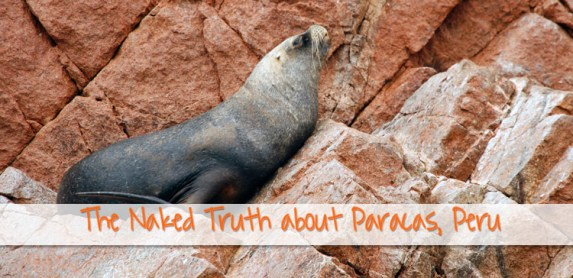 Naked Truth: How Long Should You Stay in Paracas Peru?