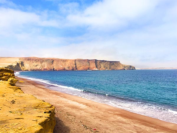 Paracas Peru and the Islas Ballestas are a must see on your Peruvian itinerary. I share 10 important things that no one tells you about travel to Paracas.