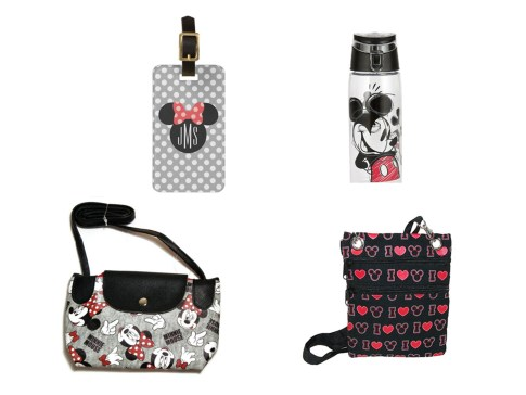 Disney Themed Travel Items for Adults under