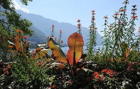 10 Reasons You Must Visit Montreux at Lake Geneva Switzerland