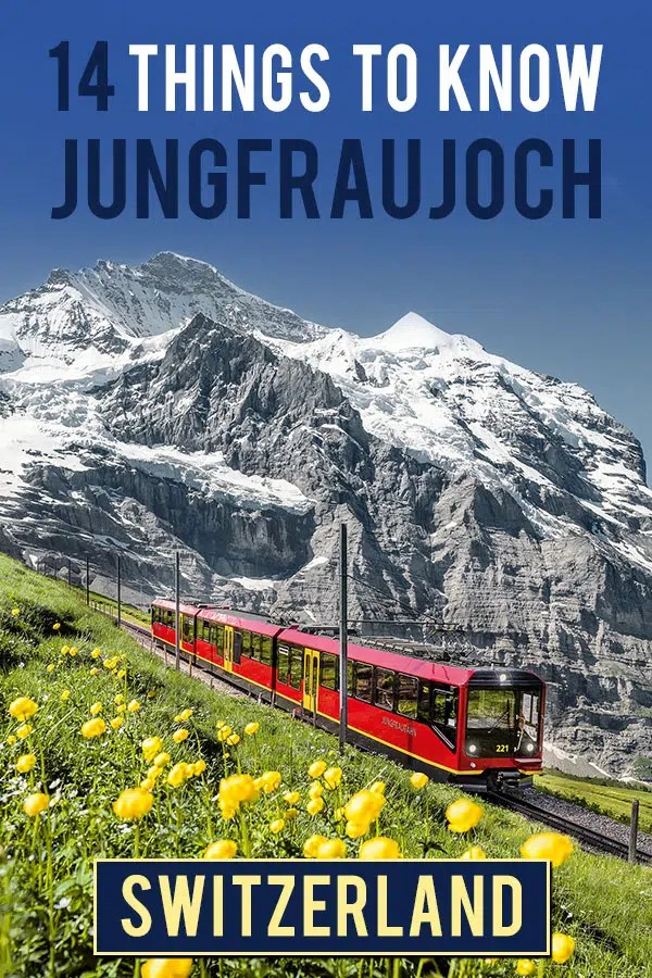 Red and yellow train riding down the mountain through a green field with yellow flowers. In the backdrop you'll see a clear by sky with tall mountains with patches of snow. Text overlay saying: 14 things to know Jungfraujoch Switzerland
