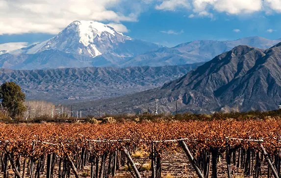 10 Incredible Things To Do In Mendoza – Argentina