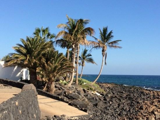 Lanzarote_Jahresbeginn_2016_Probenqueen