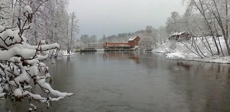 billnas_lipponenkaisa_091