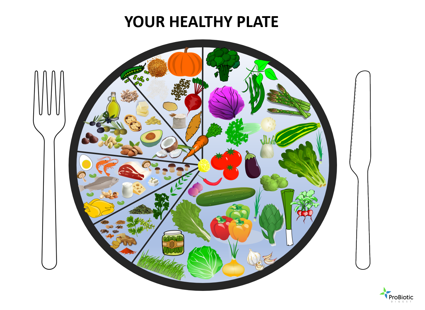 How To Create Your Healthy Plate