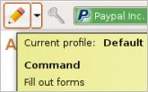 Auto Fill Forms