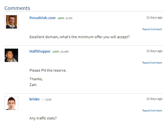 Comments on a Flippa listing