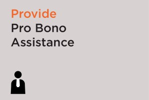 Provide Pro Bono Assistance