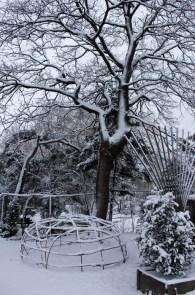 Schwitzhütten im Winter (2)