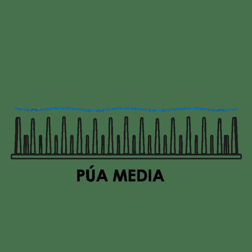 pua media
