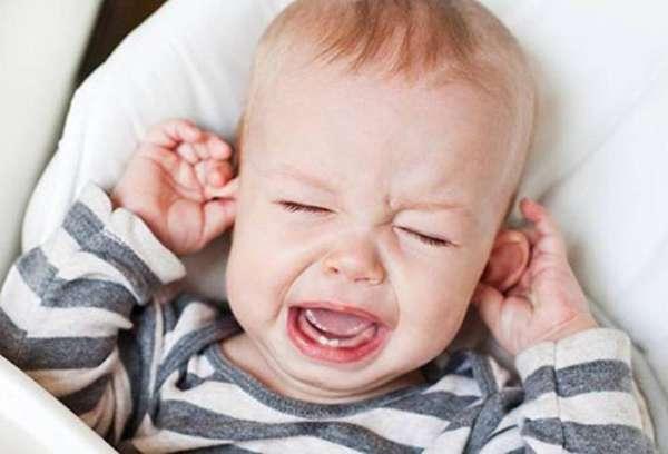 Может ли таракан проникнуть в ухо. Таракан в ухе: может ли такое быть и что делать при этом Ли таракан залезть в нос