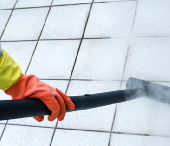tile grout cleaning winter garden