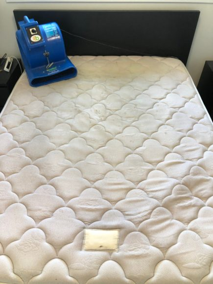 Professional-Mattress-Cleaning-in-Manchester