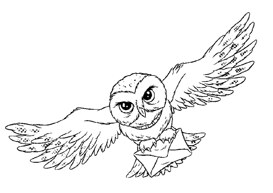 Printable Coloring Pages For Adults Owl