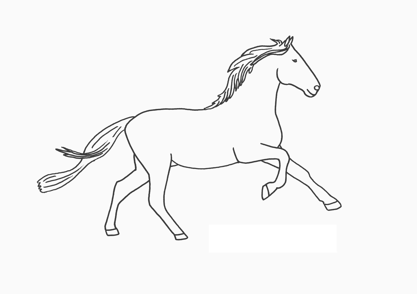 Free Horse Coloring Pages For Download